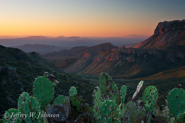 Sunrise over Pine Valley with Cactus